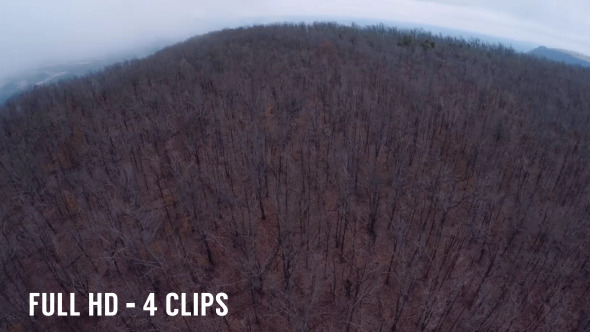 Aerial Scary Woods Pack 4 Clips