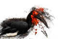 Exotic Bird, Abstract Animal Concept - PhotoDune Item for Sale