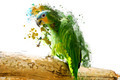 Green Parrot on the Branch, Abstract Animal Concept - PhotoDune Item for Sale