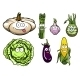 Cartooned Squash, Asparagus, Garlic, Kohlrabi, Cabbage - GraphicRiver Item for Sale