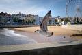 Cascais Seaguls - PhotoDune Item for Sale