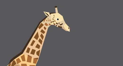 Animals - flat design