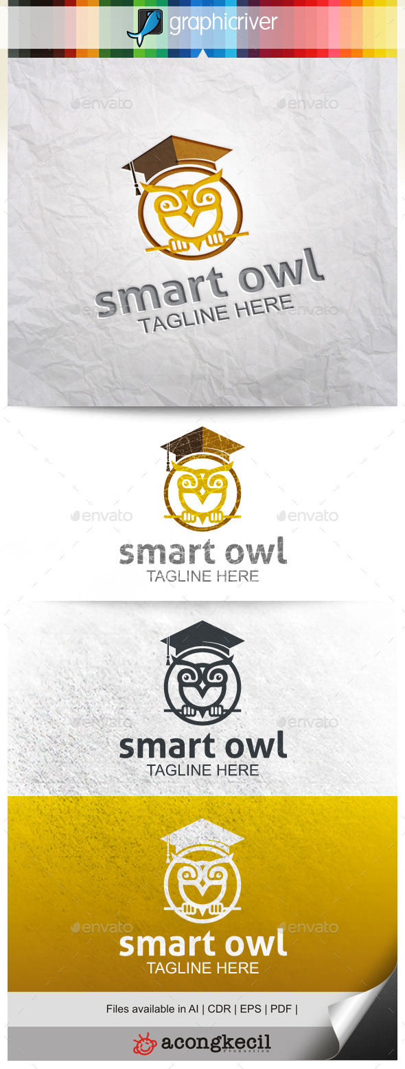 GraphicRiver Smart Owl 9985292