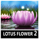 Lotus Flower Logo 2 - VideoHive Item for Sale