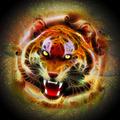 Cosmic Fire Tiger Roar - PhotoDune Item for Sale