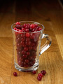 Cranberry cup - PhotoDune Item for Sale