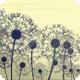 Dandelion Breeze - VideoHive Item for Sale