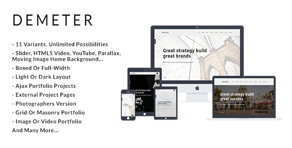 ThemeForest Demeter Creative HTML5 Template 9937984