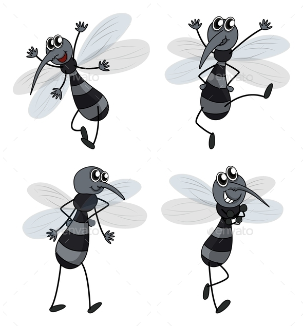 GraphicRiver Four Mosquitoes 9995872