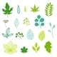 Green Leaves and Elements  - GraphicRiver Item for Sale