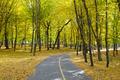 autumn landscape - PhotoDune Item for Sale