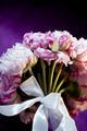 peony flower - PhotoDune Item for Sale