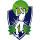 Live Cricket Score Android App