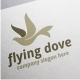 Flying Dove - GraphicRiver Item for Sale
