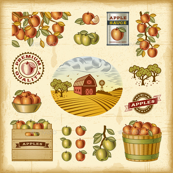 GraphicRiver Vintage Colorful Apple Harvest Set 10010941