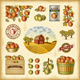 Vintage Colorful Apple Harvest Set - GraphicRiver Item for Sale