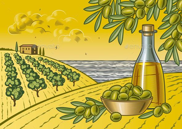 GraphicRiver Olive Harvest Landscape 10010997