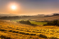 Tuscan Country at Dawn with Haze, Italy - PhotoDune Item for Sale