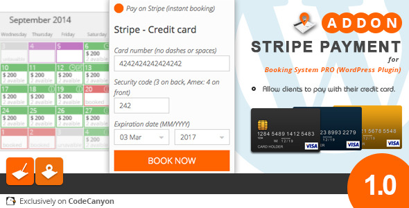 CodeCanyon BSP WP add-on Stripe Payment 10014234