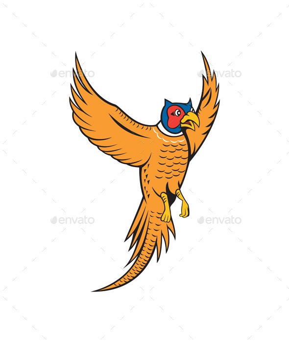 GraphicRiver Pheasant Bird Fowl Flying Cartoon 10014705