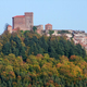 Trifels Castle - PhotoDune Item for Sale