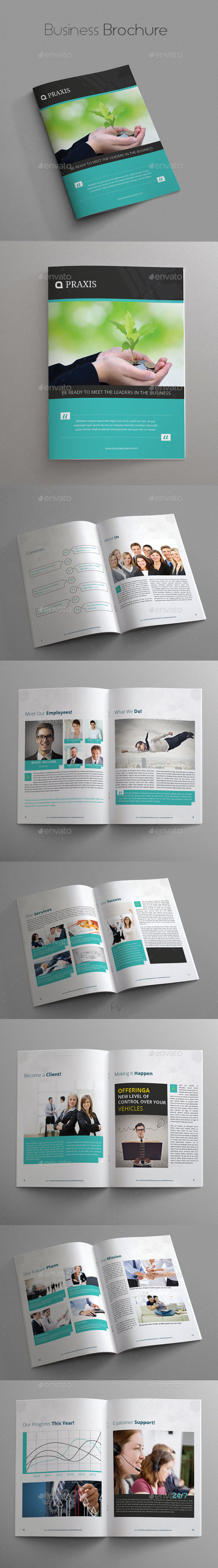 GraphicRiver Business Brochure 10017408