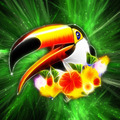 Toucan on Green Galaxy - PhotoDune Item for Sale