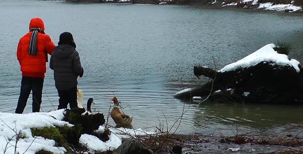 Children Feeding the Goose near Lake in Winter 2