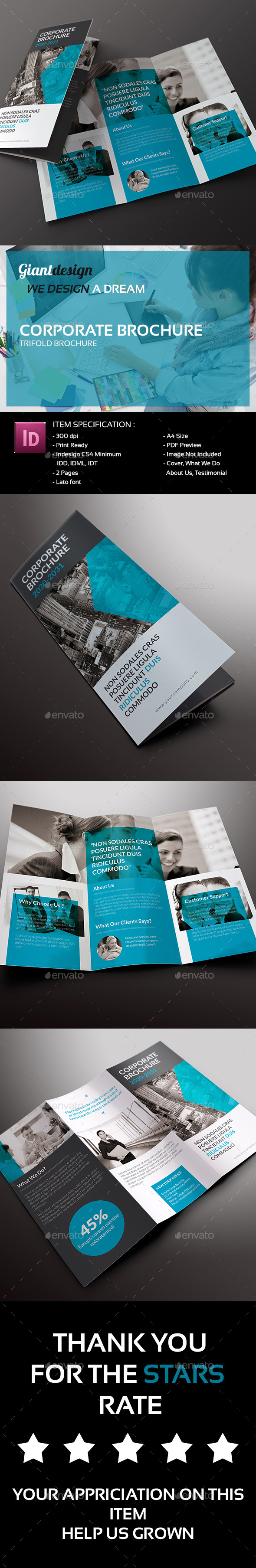 GraphicRiver Corporate Trifold Brochure 10020433