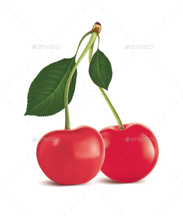 GraphicRiver Cherry with Green Leaf 10020762