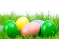 Easter eggs in grass - PhotoDune Item for Sale