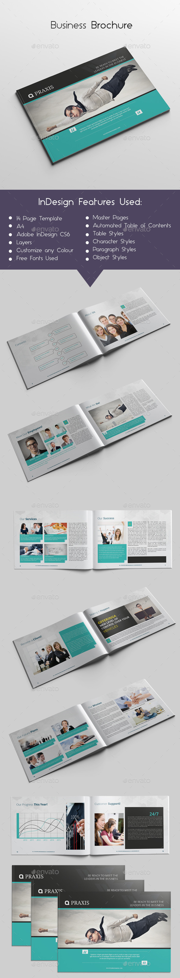 GraphicRiver Business Brochure 10028243