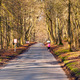 Ashridge - Runner and Cyclists - PhotoDune Item for Sale