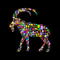 goat - PhotoDune Item for Sale