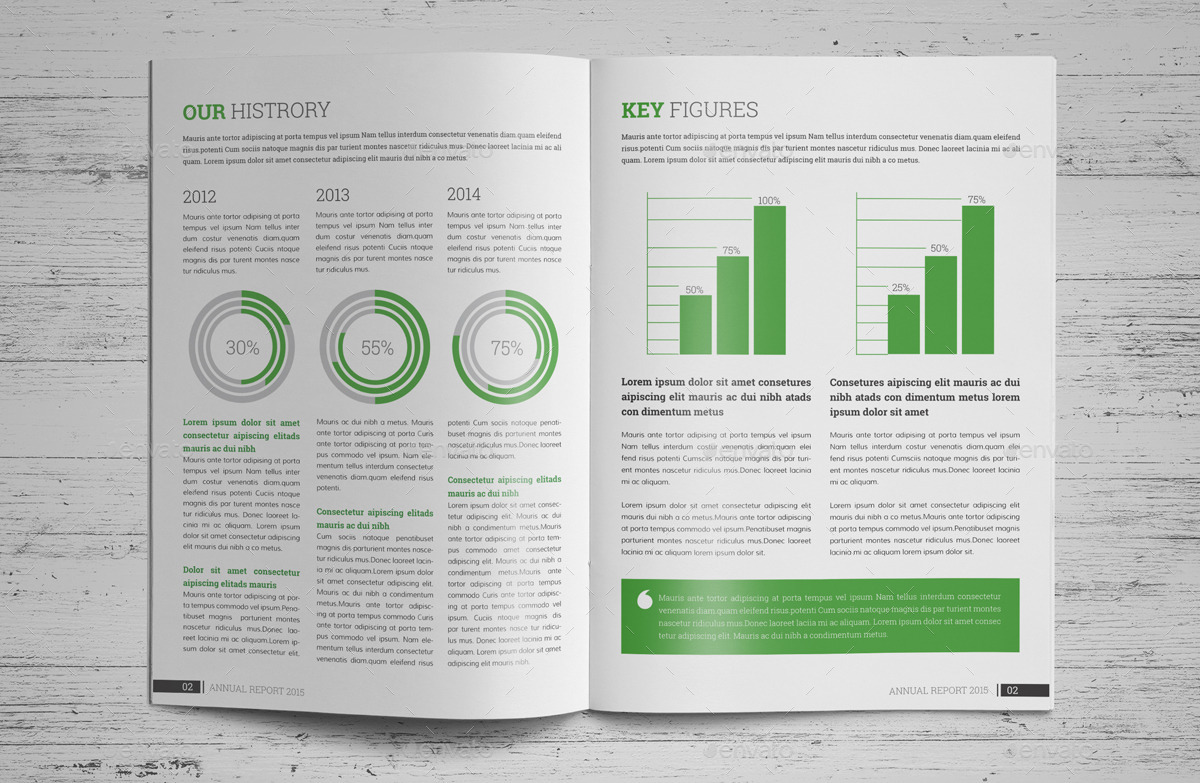 indesign templates brochure - annual report brochure indesign template v2 by janysultana