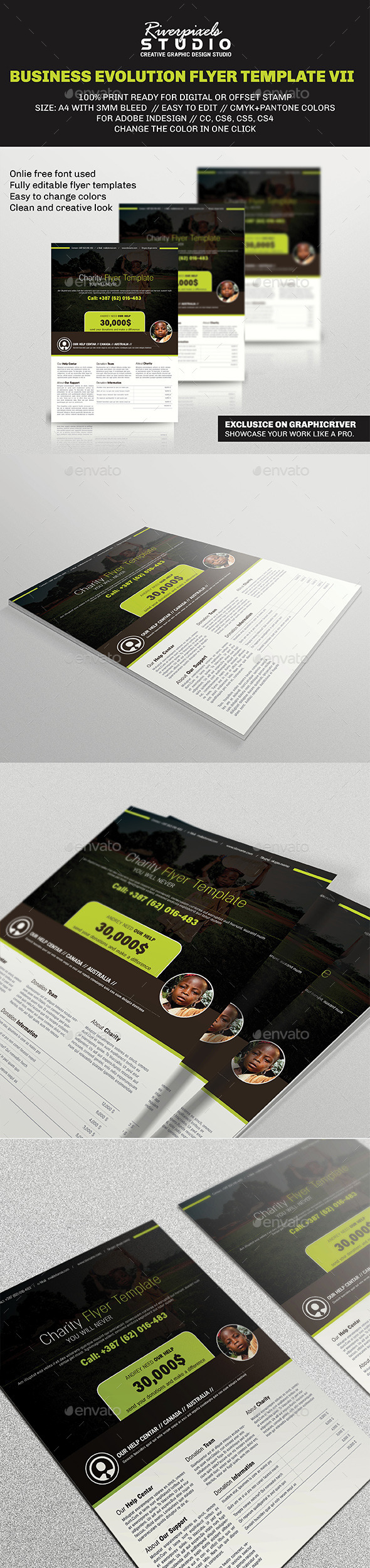 GraphicRiver Business Evolution Flyer Template VII 10037203