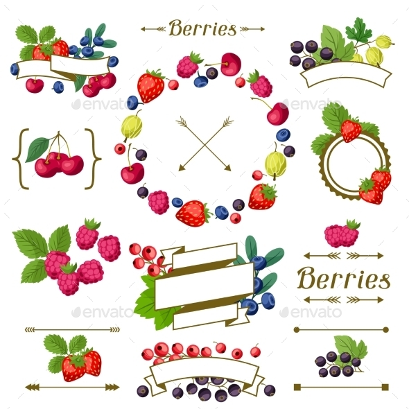 GraphicRiver Berry Frames and Labels 10042150