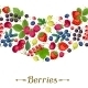 Berries - GraphicRiver Item for Sale