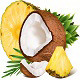 Pineapple and Coconut - GraphicRiver Item for Sale