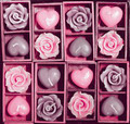 candle roses and candle hearts in wooden box pink shade - PhotoDune Item for Sale
