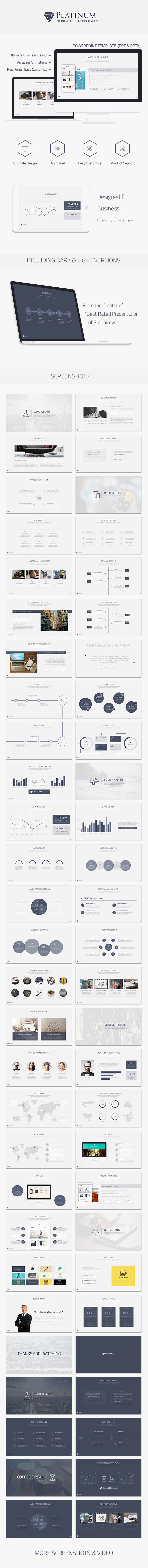 GraphicRiver Platinum Business Powerpoint Template 10049567