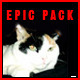 Epic Pack - AudioJungle Item for Sale