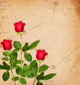 Vintage Background with Red Roses - PhotoDune Item for Sale