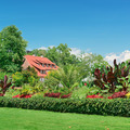 picturesque lawn in the park - PhotoDune Item for Sale