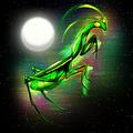 Praying Mantis Doodle Art - PhotoDune Item for Sale