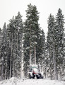 Tractor in winter forest - PhotoDune Item for Sale