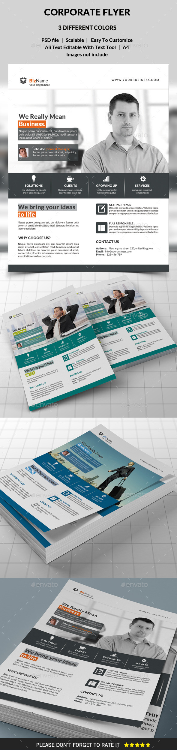 GraphicRiver Corporate Flyer 10069003