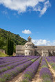 Abbey of Senanque in summer light - PhotoDune Item for Sale
