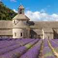 Abbey of Senanque and lavander field - PhotoDune Item for Sale