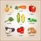 Vegetables Ingredients - GraphicRiver Item for Sale
